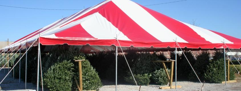tree lot tent
