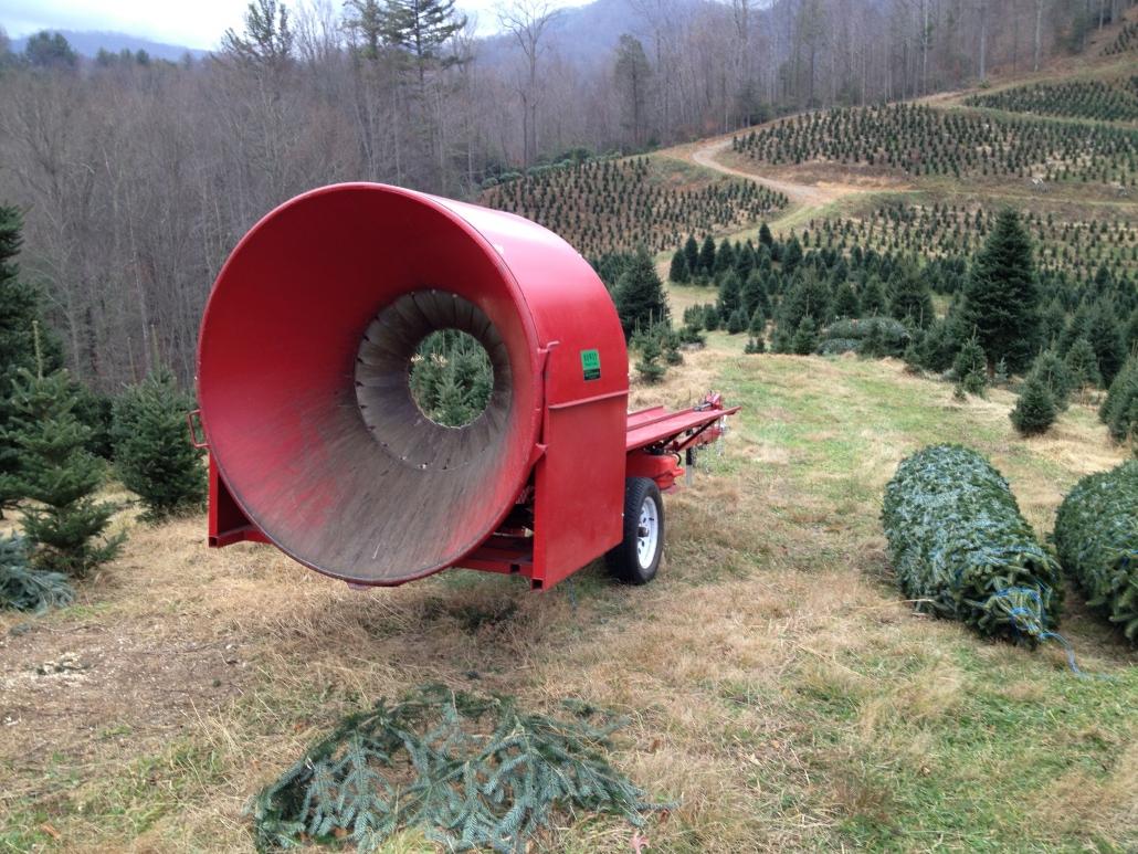 Big Tree Bailer