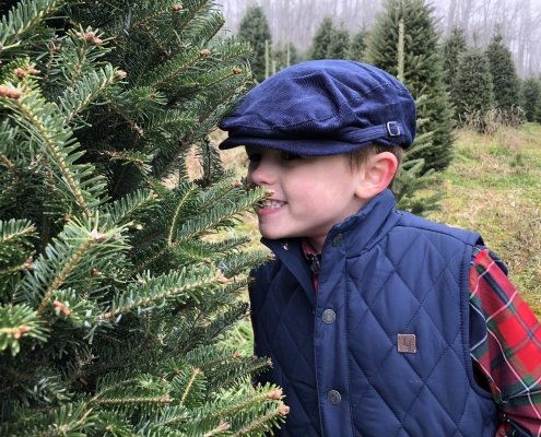 Cartner Choose and Cut Christmas Trees